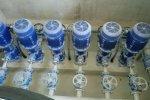 Remplacement des pompes de forages et création d'une surpression d'eau potable – 150 m³/h